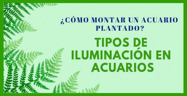 TIPOS DE ILUMINACIÓN PARA ACUARIOS PLANTADOS