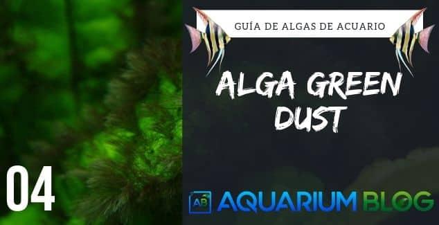 Alga Green Dust