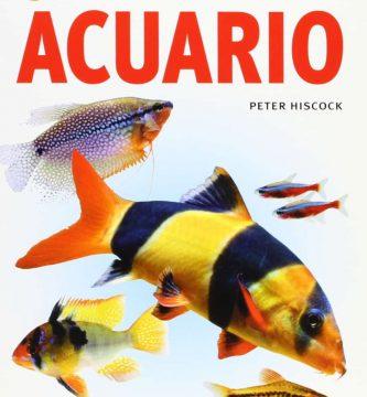 50 Consejos de oro para tu acuario